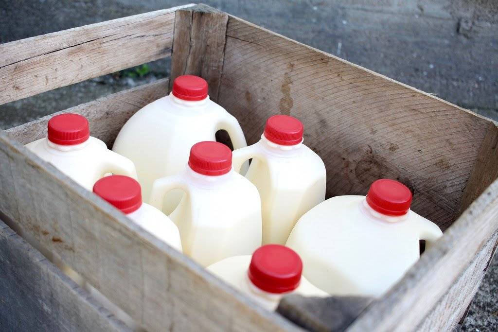 Why JakoPure milk is called 'liquid gold'