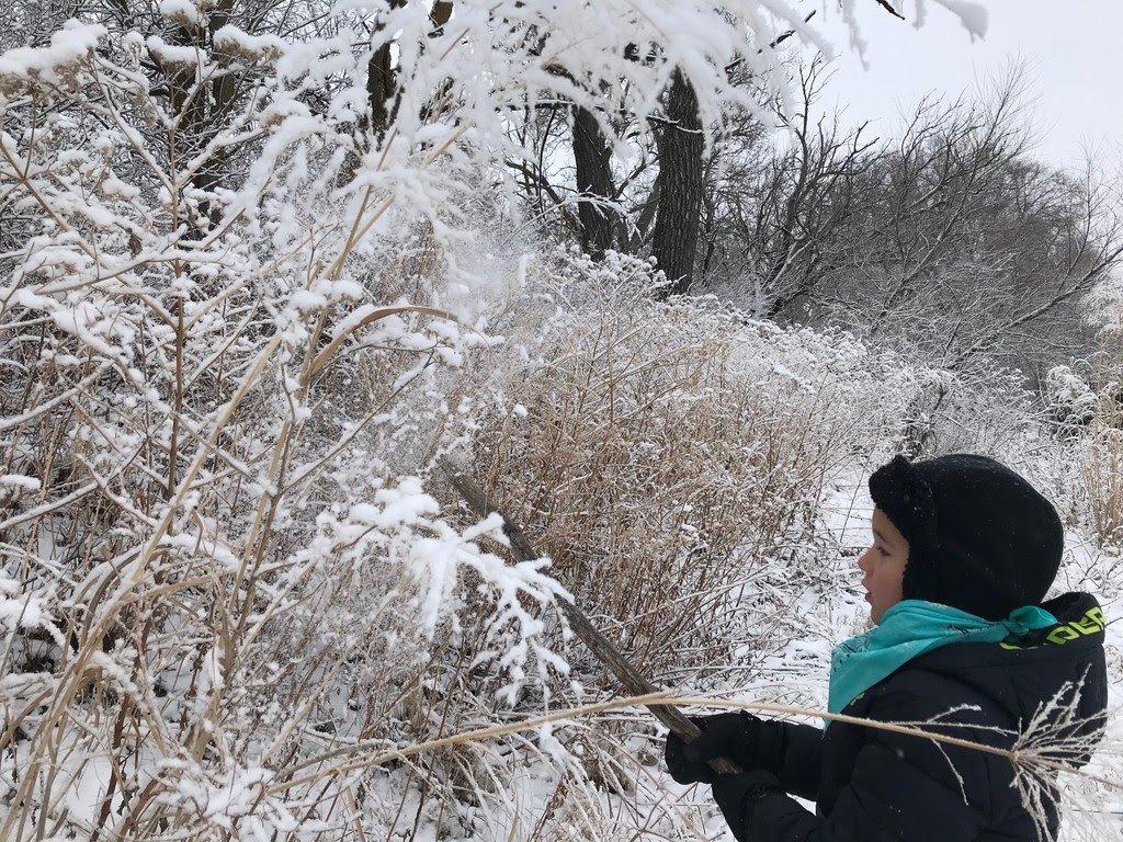 Snowy Adventures + Chicken Bundles